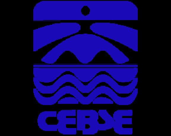 CEBSE logo